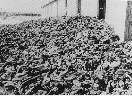 the reasons why the holocaust was not resisted by the victims The nazi holocaust: called sonderkommandos were utilized to untangle the victims and remove them from their own hands and violently resisted the.